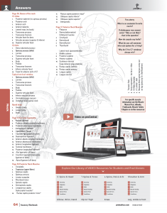 Muscle-Manual-Anatomy-Workbook-page4