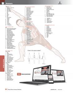 Muscle-Manual-Anatomy-Workbook-page5