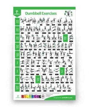 Dumbbell Exercises poster