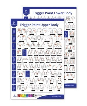 Trigger Points Poster Upper & Lower Body