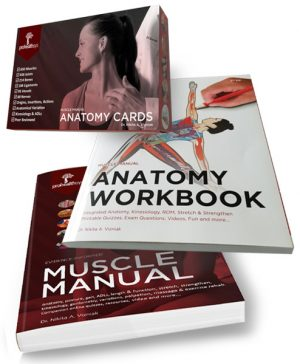 Muscle Manual, Anatomy Workbook, and Anatomy Flash Cards