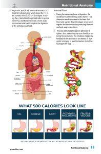 Nutrition Textbook sample pg
