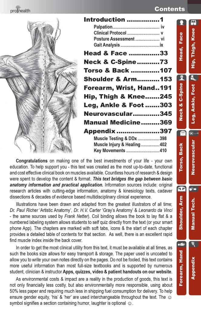 Muscle manual textbook prohealthsys mm11lrg fandeluxe Images