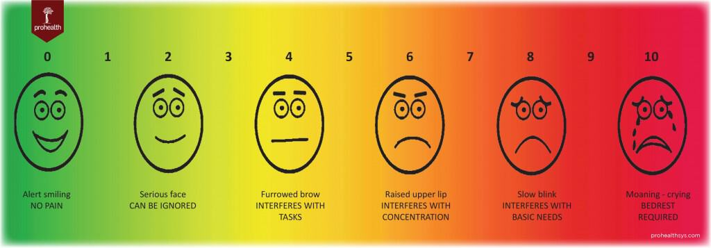 Pain Scale ProHealth Vizniak