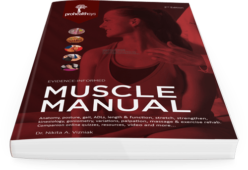Muscle Manual 2nd Edition