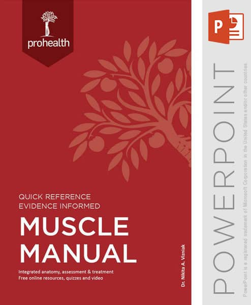 muscle_manual_powerpoint