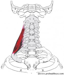 CS AN Scalene_Middle
