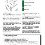 1 botanical medicine contents 2