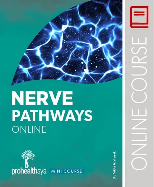 nervepathways_cover_woo