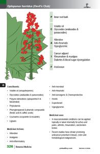 BotanicalMedicine_interior_page_326