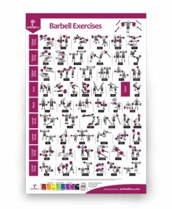 Barbell Exercise Poster