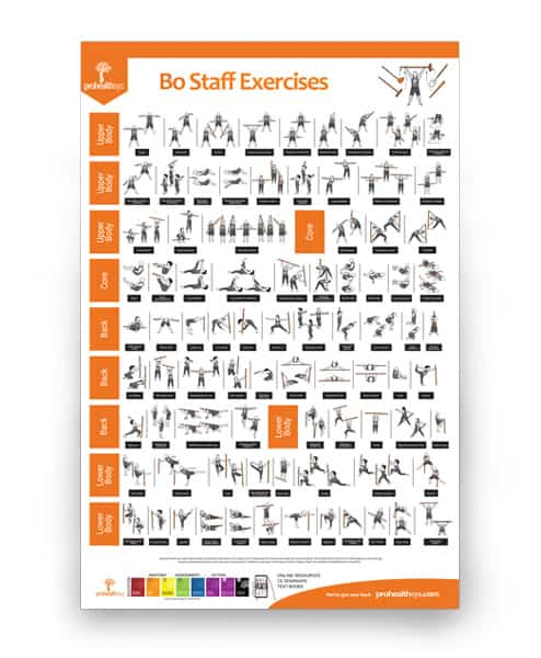 Bo Staff Exercises Poster