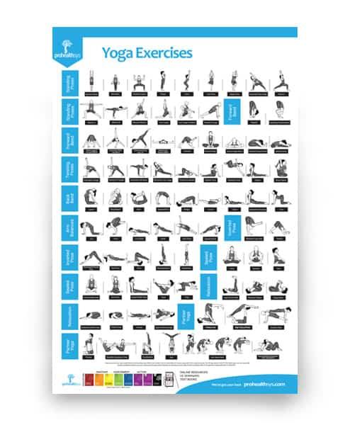 Yoga Exercises Poster