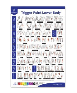 Trigger Point Lower Body