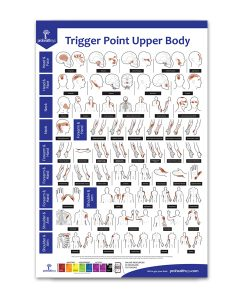 Trigger Point Upper Body
