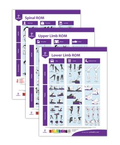 ROM Assessment Posters 3-Pack