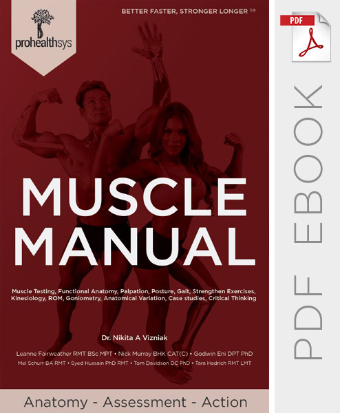Muscle Manual 5th Edition eBook