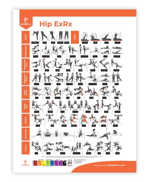 Hip Rehabilitation Poster