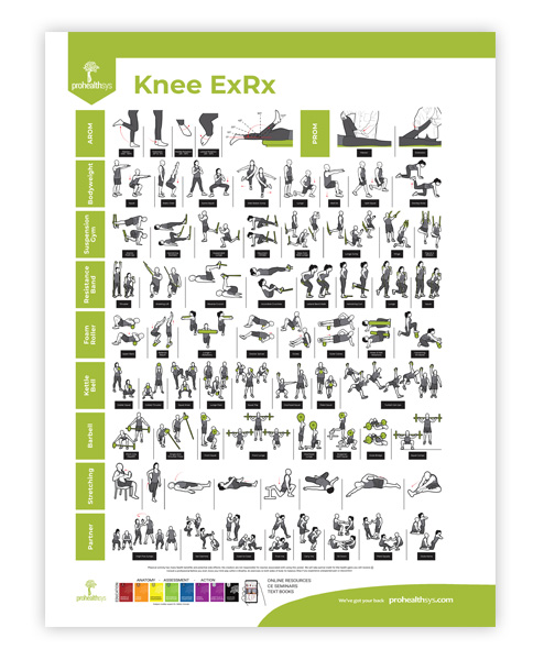 Knee Rehabilitation Poster