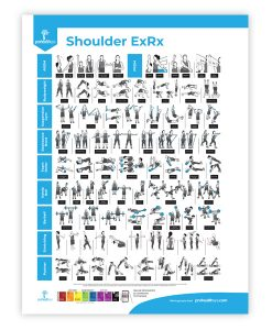 Shoulder Rehabilitation Poster
