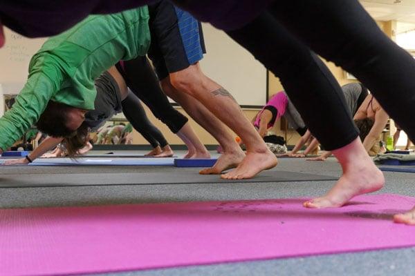 Seminar: Movement Therapy & Yoga Anatomy